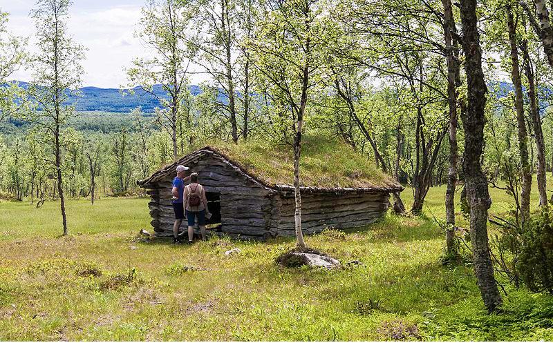 Påvist harepest i Hedmark og oppland