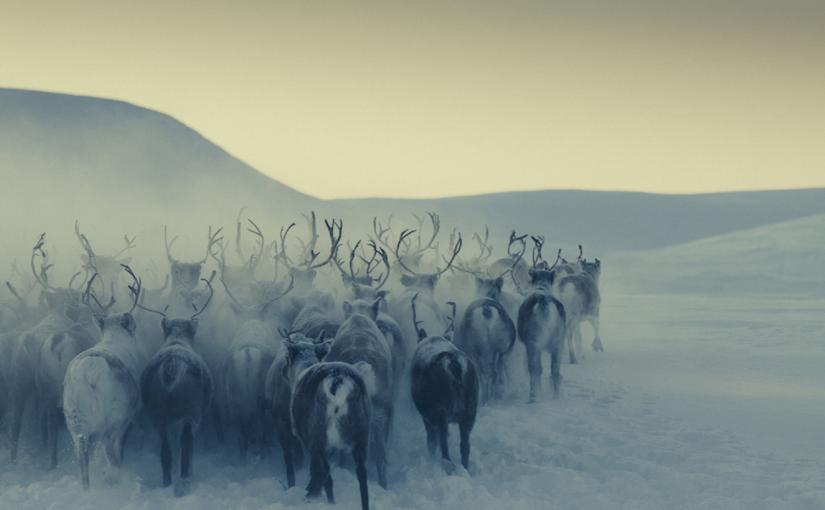 Innstiller på at Røros innlemmes i det samisk forvaltningsområdet