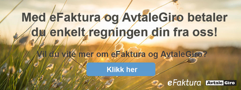Illustrasjonsfoto med eFaktura og AvtaleGiro betaler du enkelt regningen din fra oss