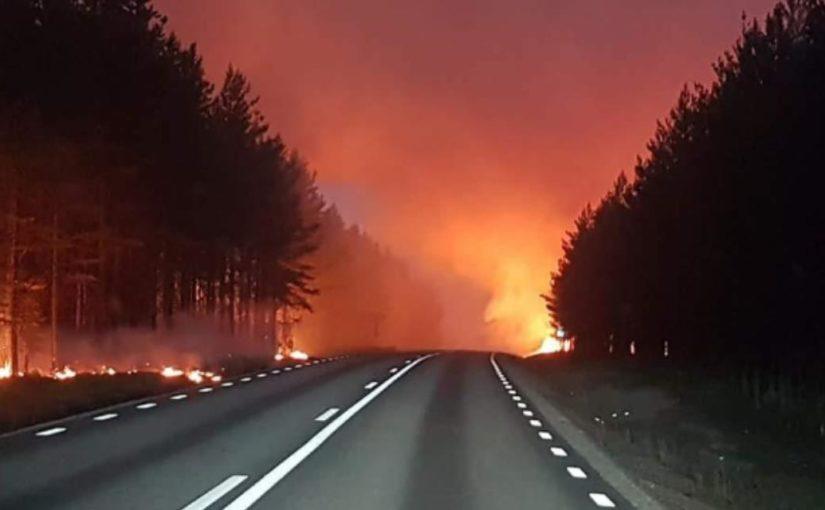 Stor innsats fra «Trønderbataljonen» bidro til å slukke skogbrannene i Jämtland