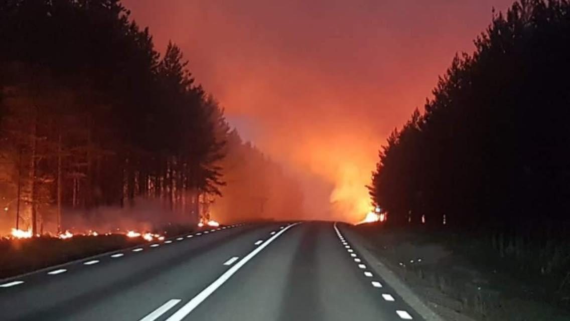 Illustrasjonsfoto skogbrann Sverige