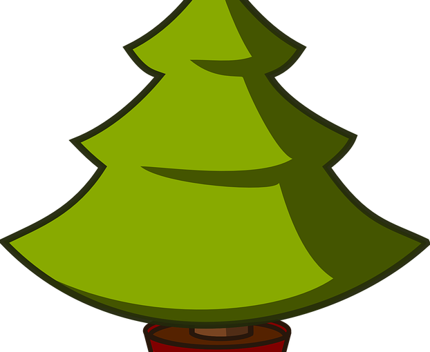 Innsamling av juletrær