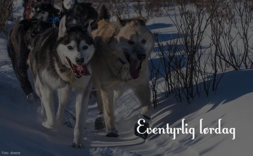Eventyrlig lørdag:Hundekjører og eventyrstund på Røros bibliotek
