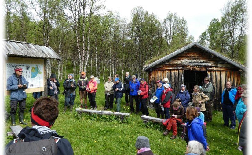 Åpen dag på Sølendet, med botanisk vandring rundt i naturreservatet – mandag 5. juli klokken 12.00